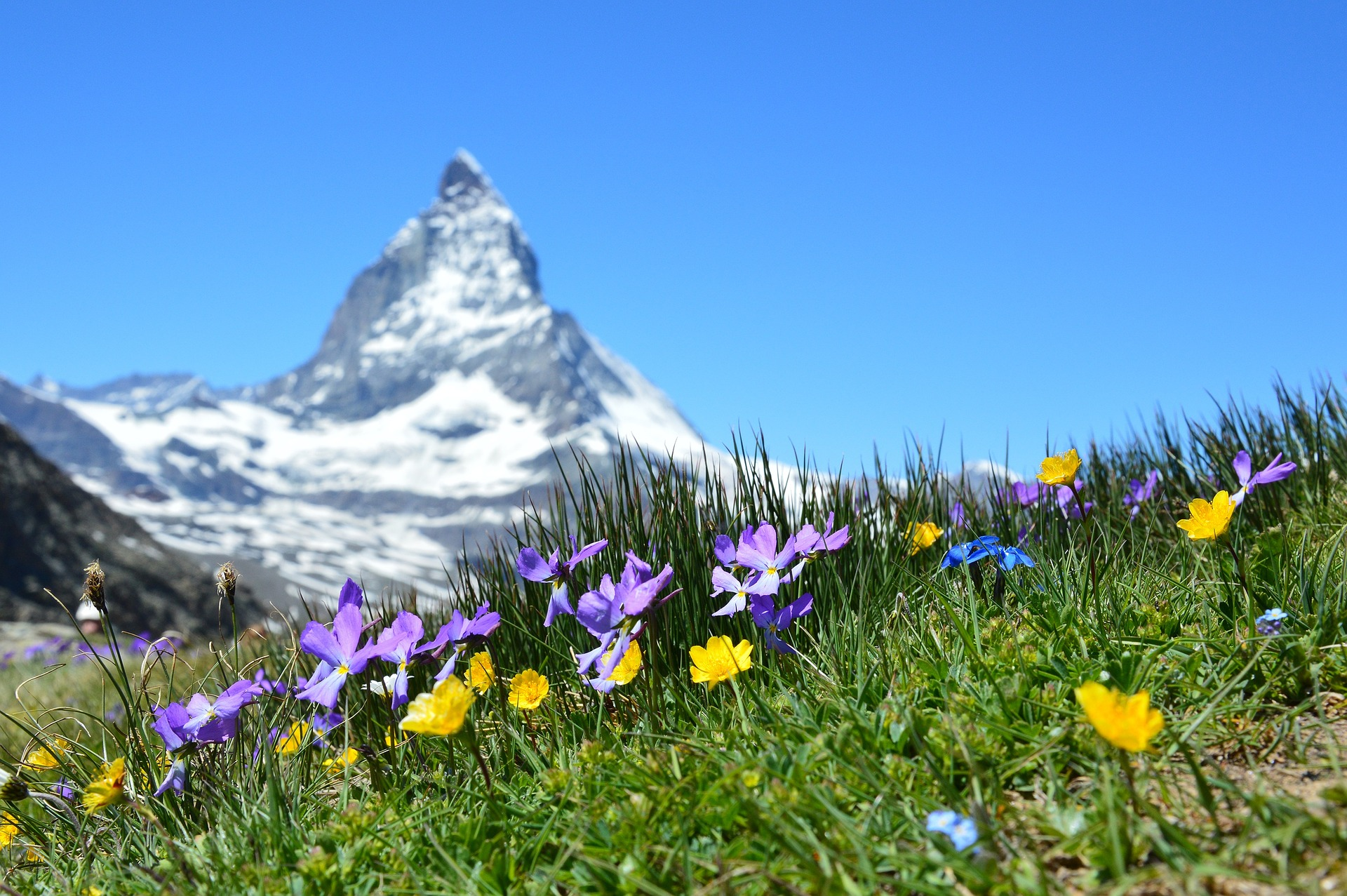 Ingolf Derkow und das Bergwandern Alpen Matterhorn-1516734_1920